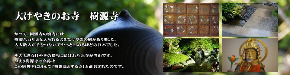 樹源寺オフィシャルブログ
